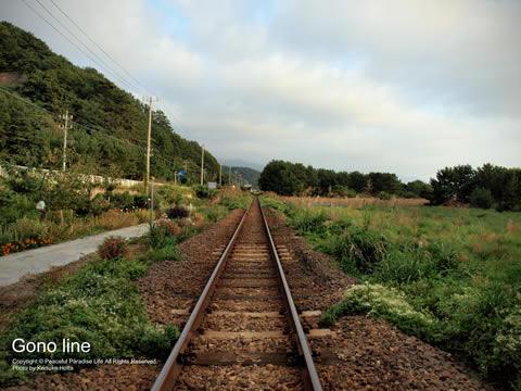 五能線の線路