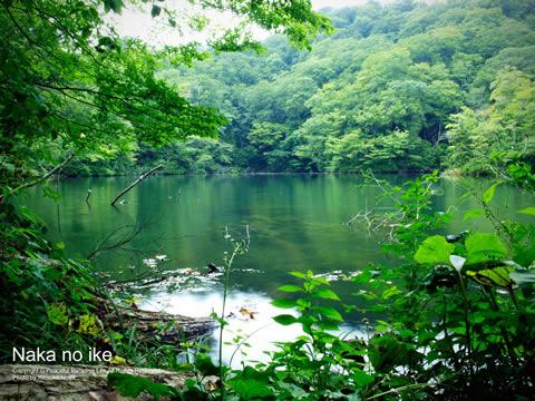 十二湖 中の池