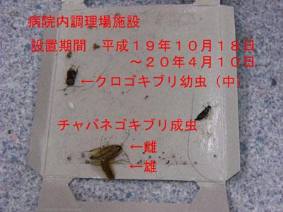 PCO魂20.4.10-1