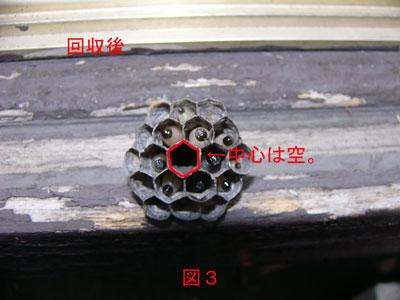 ハチ駆除編初期巣-6