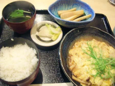 sakuragawa4.jpg