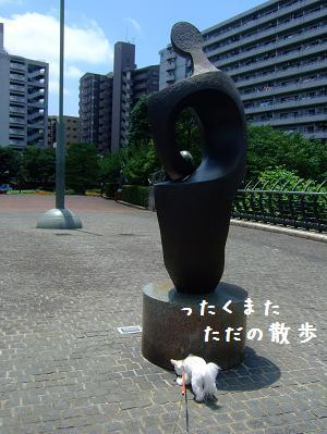 592.jpg
