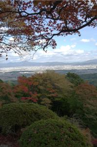 2008・京都・秋 (25)