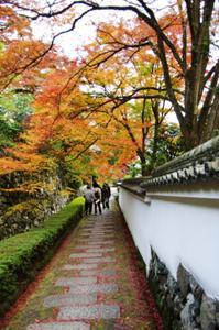 2008・京都・秋 (32)