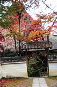 2008・京都・秋 (48)