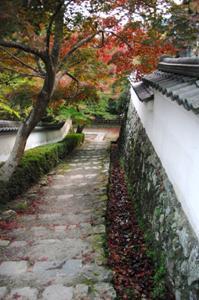 2008・京都・秋 (50)