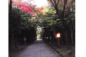 2008・京都・秋 (52)