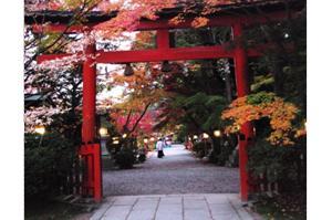 2008・京都・秋 (53)
