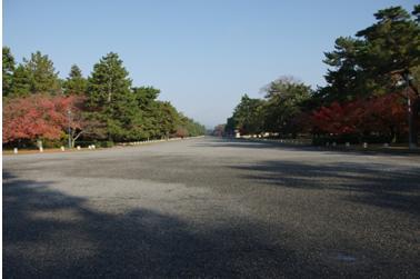 2008 秋 (3)