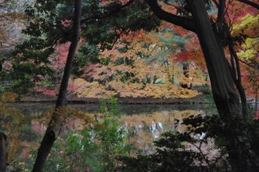 2008 秋 (70)