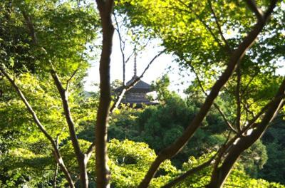 京都の風景その5 (10)