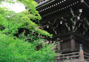 aki110_convert_20091029130747.jpg