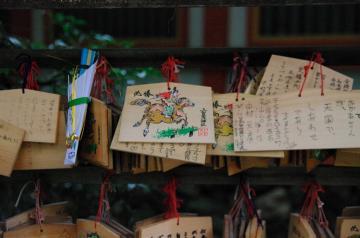 aki97_convert_20091026121645.jpg