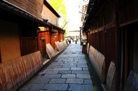 京都桜便り22