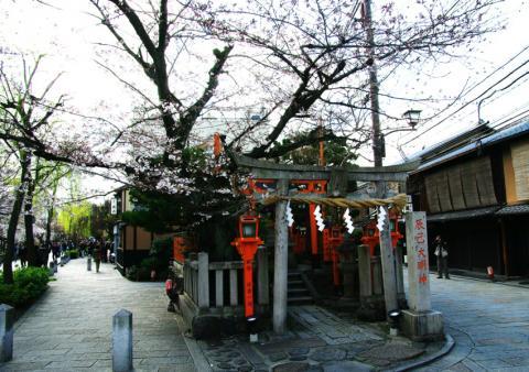 京都桜便り23