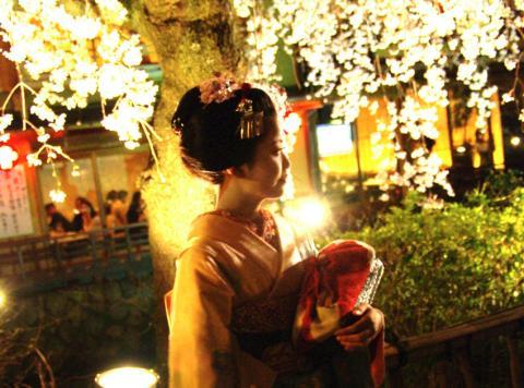 sakura36_convert_20090427134335.jpg