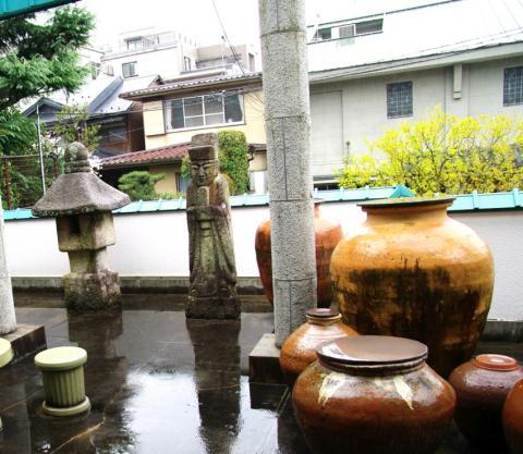 sakura81_convert_20090511130228.jpg