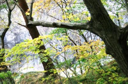 東京の秋17