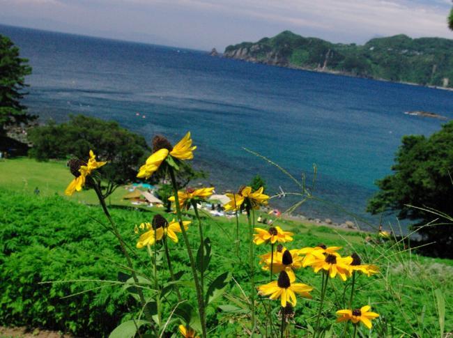 海の風景2-43