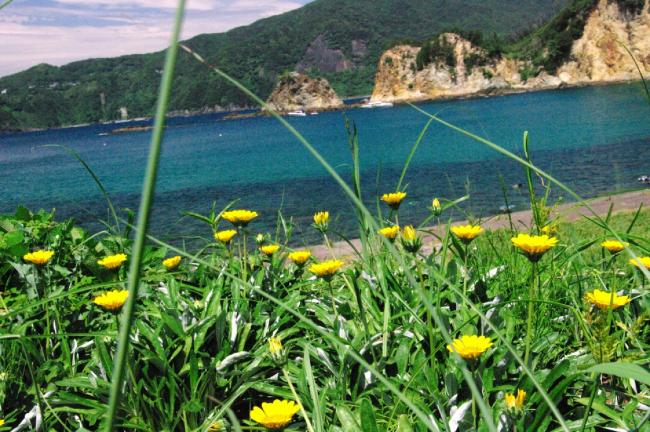 海の風景2-45