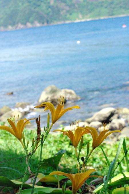 海の風景2-47