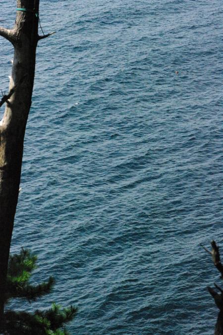 海の風景2-53