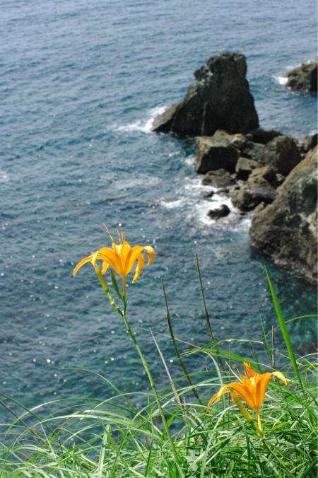 海の風景2-55