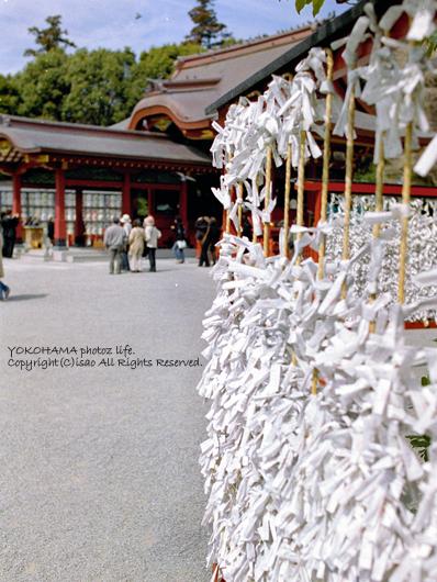 2008_0424_11.jpg