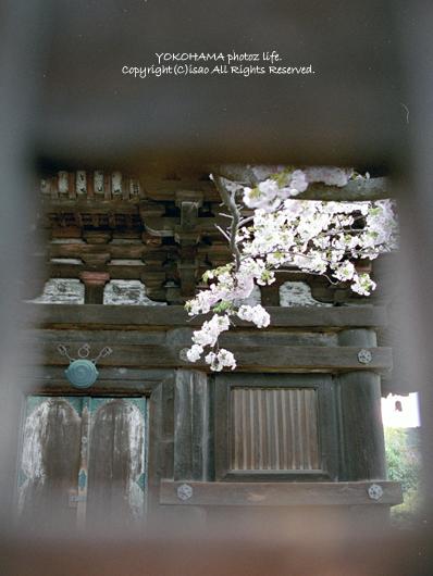 2008_0503_03.jpg