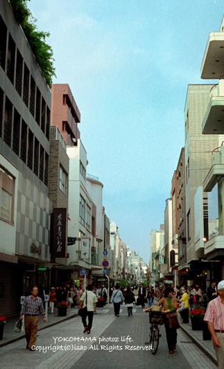 2008_0529_10.jpg