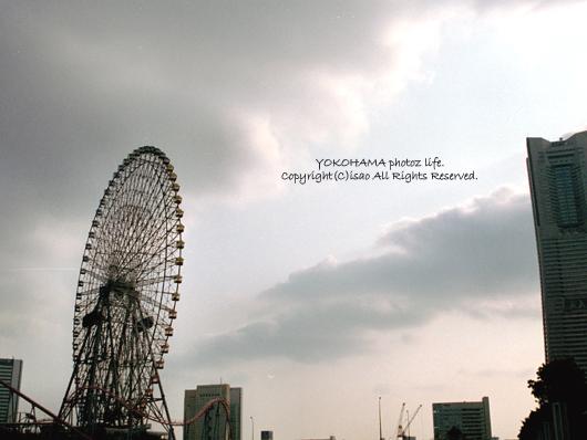 2008_509_05.jpg