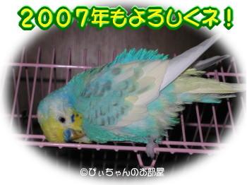 20061231diary