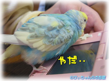 """o(>ω< )o""ヤダヤダ!!""o( >ω<)o"""