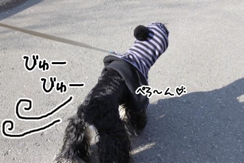 強風2の1