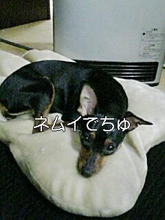 20080321155638