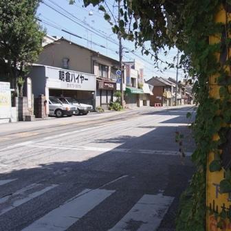 090920natukashino.jpg
