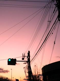 画像 015