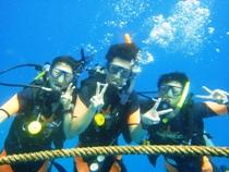 タオ島 ダイビング オープン終了