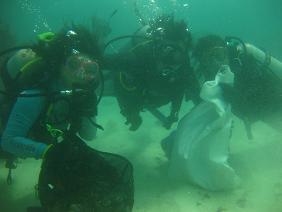 タイ・タオ島・ダイビング・ナンユアン島・クリーンナップ