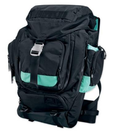 Nike-SB-Holiday-2009-Backpacks-03_convert_20091016012550.jpg
