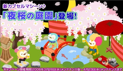 夜桜の庭園