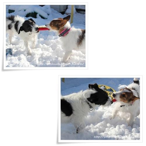 1月の雪遊び