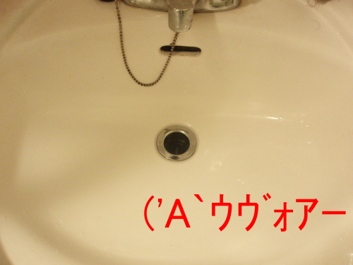P4050014.jpg