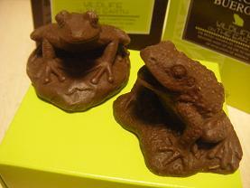 リアルな蛙さん