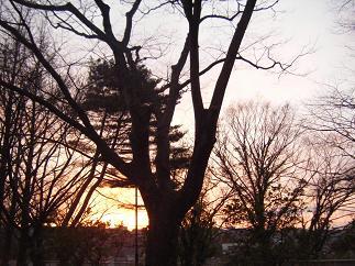 夕方の西公園