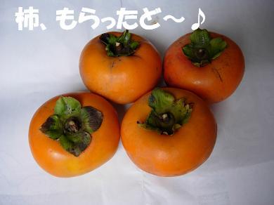 柿、もらったど~♪