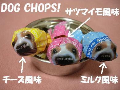 DOG CHOPS!