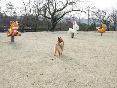 動物の遊具