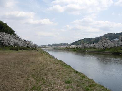 三刀屋川堤防