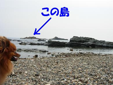 海とりおん